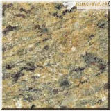 Polished Giallo Sf Real Granite for Countertops & Wall (MT003)