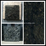 Black Pattern Mosaic Tiles for Flooring (YQC)