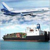 Cheapest Price Logistics Service From China to La Guaira/Cabello