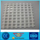 Polyester Geogrid / Poliester Geogrid with Ce Certificate