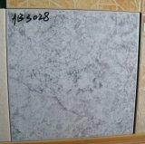 30X30cm Ceramic Floor Tiles (3028)