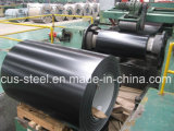 PPGI/PPGL/Painted Galvanized Steel Coil of Professional Manufacture