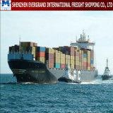 Sea Freight Door to Door From China to Brazil
