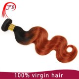 Ombre Body Wave Human Hair Weft, Wholesale Virgin Chinese Hair