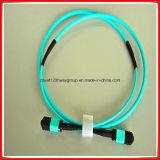 8core/12core/24core Fiber Optical MPO/MTP Patch Cord/MPO Connector