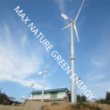 Ce Approve Small Windmill for Power Supply