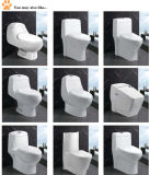 Pure White Durable Sanitary Ware Two Piece Toilets (EDA66153)