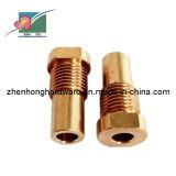 Water Heating Accessories Brass Fasteners (XINYU-C-001)