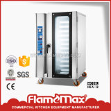 Stainless Steel Commercial Electric Convection Oven (HEA-12)