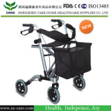 Shopping Cart with Standard 8