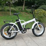 20inch Fat Tyre Aussis Beach Bicycle
