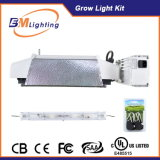 Low Frequency Square Wave Soft Start Ballast 630W CMH Double Ended Grow Light HID Indoor Grow Kits