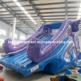 2017 Hot Sale Inflatable Water Slide Toys for Amusement Park