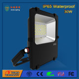 SMD 3030 30W IP65 LED Flood Light for Highway