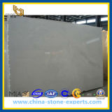 A Grade Pure White Royal White Marble Slab (YQZ-MS1013)