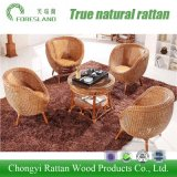 Moden Style Rattan Furniture for Home Hotel Restaurant
