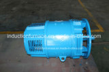 Great Quality 0.4-200kw Small DC Electric Motor for Sale