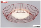 Indoor Lighting LED Modern Decorative Ceiling Lamp with Ce Approval