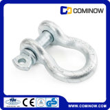 Screw Pin Anchor Bow Shackle G209 Us Type Drop Forged Galvanized