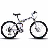 Top Quality Carbon Mountain Cycle From China (MTB-49)