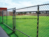 PVC Coated Chain Link Iron Wire Mesh/Galvanized Wire Netting