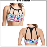 Competitive Price Private Label Ladies Gym Top Sport Bra