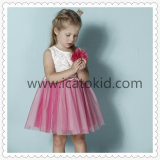 Latest Girls Dress Lovely Design for Little Girl Cute Fashion Casual Dress
