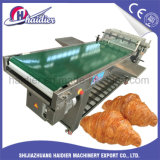 Semi-Automatic Croissant Moudling Machine Stainless Steel with Cheap Price