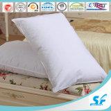High Quality Microfiber European Pillow 48X74cm