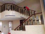 Foshan Wudi Handrail/Railing