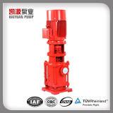 Dl Vertical Multistage High Pressure Water Pump