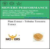 Organic Natural Plant Extract - Tribulus Terrestris Extract