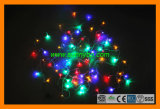 Decorative String Light with 8 Functions (SBP-14)