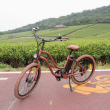 Nice City/Beach Electric Bike for Woman