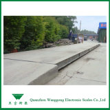 Scs120, 3X18m Electronic Weighbridge for Poultry Farm