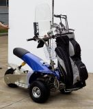 Electric Golf Cruiser