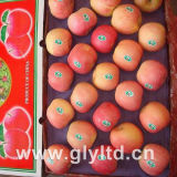 Good Quality for Exporting Chinese FUJI Apple