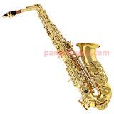 Pango Music Eb Key Alto Saxophone (PMAS-2017)