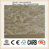 High Density WBP Glue 18mm OSB Plywood