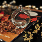 Transparent Empty Diffuser Perfume Bottles