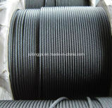 Steel Wire Rope, Galvanized Steel Wire Rope 6*24