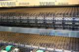 Stainless Steel Straight Flat Wire Mesh Conveyors