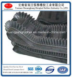 Sidewall Conveyor Belt in Industrial Resist Heat