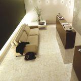 600X600mm Flooring Porcelain Full Polished Glazed Tile (IMB1684)