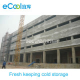 Middle Size Fresh Keeping Cold Room for Vegetables and Fruits