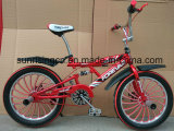 2016 New Stylre Freestyle Bicycle with Three Backend Sr-Fs07r