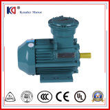 IP55 Three Phase AC Explosion Proof Electrical Motor