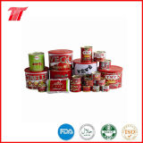 Hot Sell Tomato Ketchup with All Kinds of Sizes