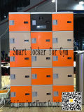 Smart Locker for Self-Service Gym by IC Card, Face, Finger, Vena Metacarpa, Management Software
