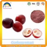 Plant Extract Cranberry Extract Powder